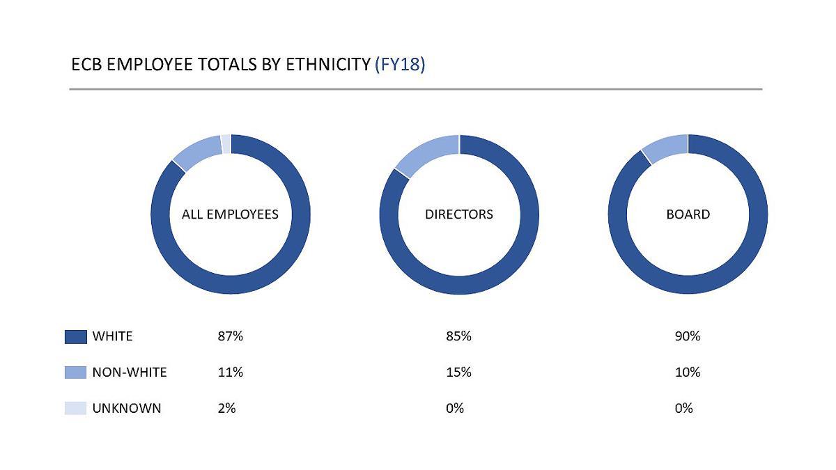 ECB ethnicity breakdown
